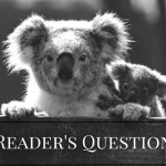 When Are You going to Have A Giveaway- Reader Question From William Gossage