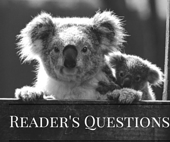 Reader's Questions