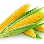I found a #coupon for #corn- #save 20% until 10-3 (Gracie's favorite veggie)