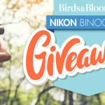 3 #Winners!  Enter To #Win Nikon MONARCH 5 Binoculars Worth $330 ~ #Sweeps Ends 6-30